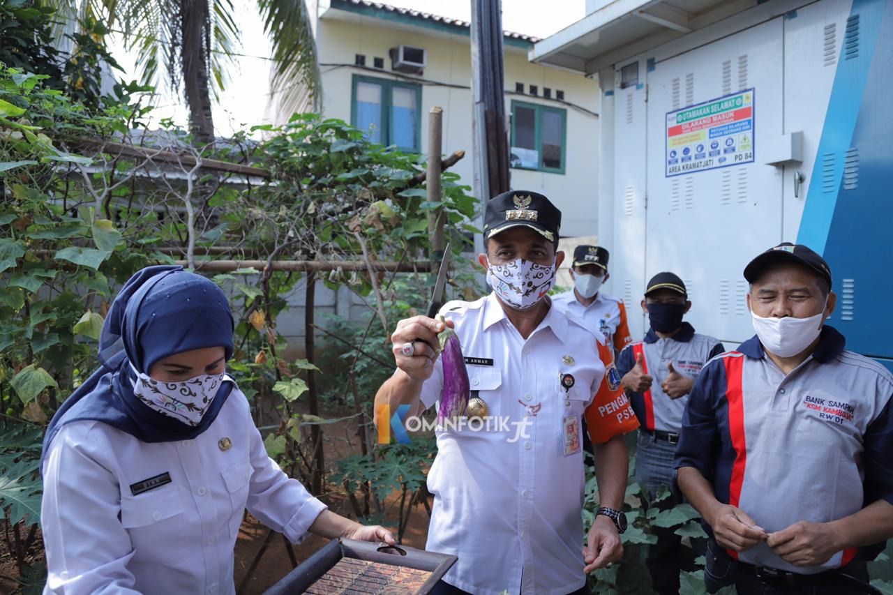 Panen Hasil Urban Farming Di Kelurahan Kebon Pala